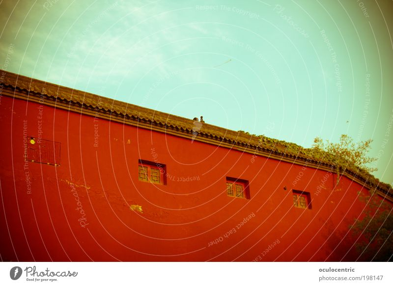 Sky Old Blue Red Plant Sun Clouds Wall (building) Wall (barrier) Bright Beautiful weather Firm China Tradition Motionless Lomography