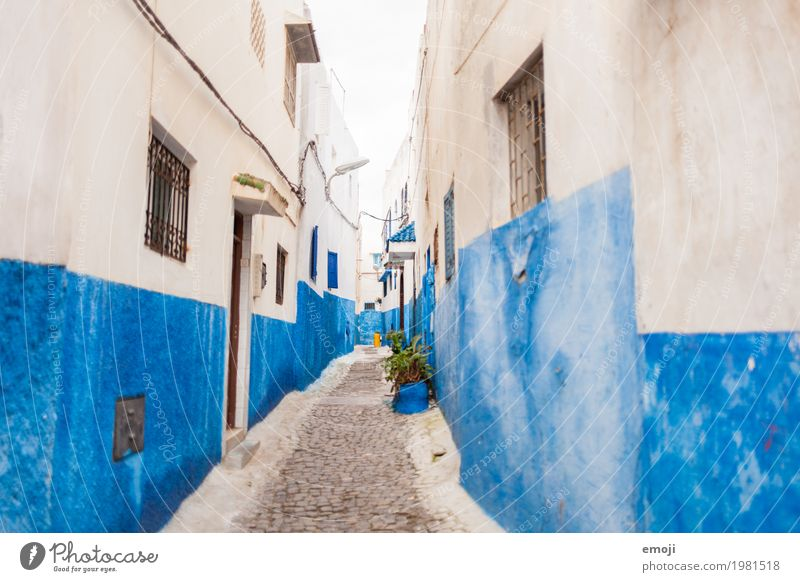 Morocco Village Fishing village Small Town Old town House (Residential Structure) Wall (barrier) Wall (building) Facade Tourist Attraction Blue Mediterranean
