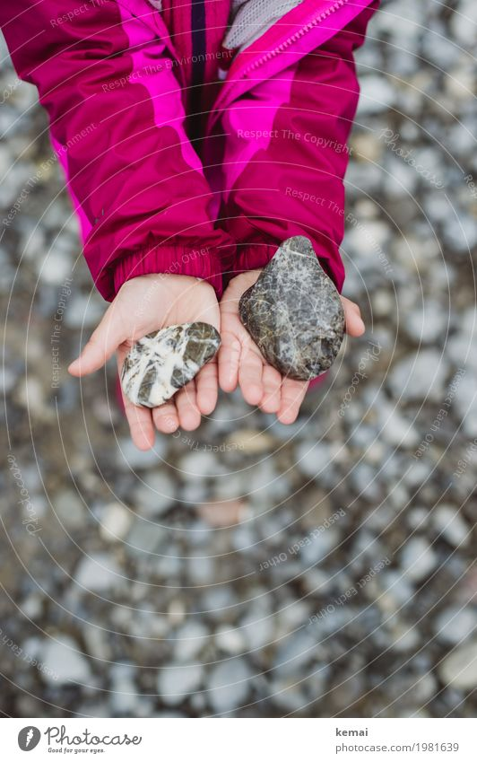 girl's stones Wellness Life Senses Calm Leisure and hobbies Playing Human being Girl Hand Fingers Palm of the hand 1 3 - 8 years Child Infancy Environment