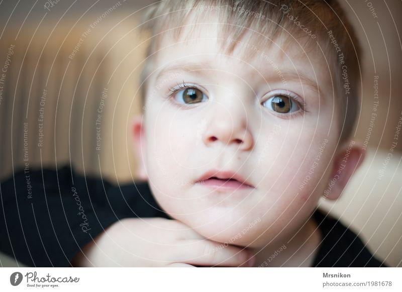Human being Child Beautiful Eyes Life Boy (child) Think Blonde Infancy Communicate Wait Cute Toddler Brash Son Staring