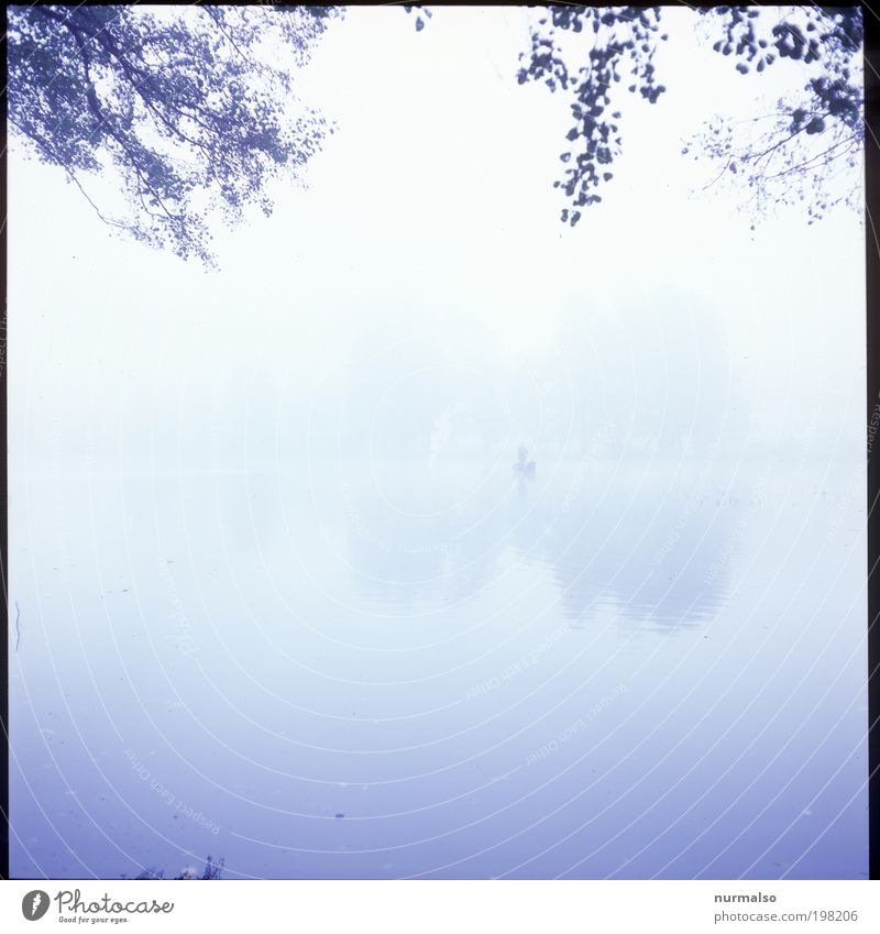 Human being Nature Man Water Plant Relaxation Calm Landscape Animal Adults Autumn Dream Moody Masculine Fog Contentment