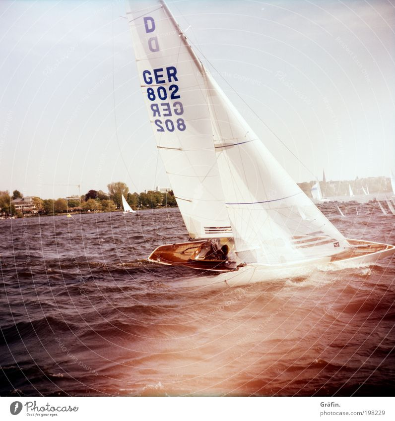 heel Sailing Waves Aquatics Regatta Summer Lake Hamburg Alster Sailboat Sailing ship On board Driving To swing Sports Together Wet Athletic Brave Endurance