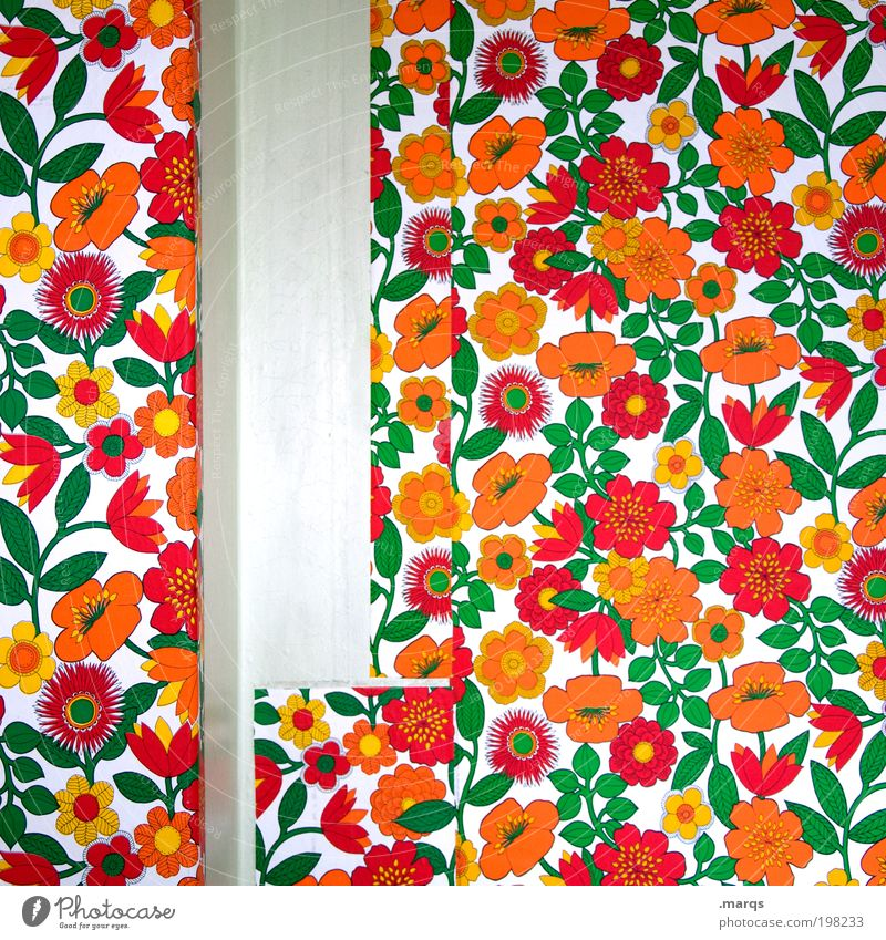 Beautiful Old Flower Plant Flat (apartment) Background picture Lifestyle Retro Decoration Living or residing Wallpaper Moving (to change residence) Nostalgia Redecorate Gap Arrange