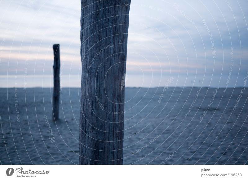 Sky Ocean Blue Beach Far-off places Dark Freedom Wood Gray Sand Landscape Coast Horizon Gloomy Near North Sea