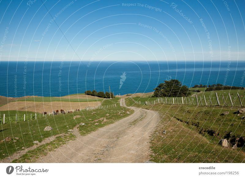 Nature Sky Ocean Plant Street Meadow Grass Spring Lanes & trails Landscape Field Waves Coast Environment Transport Rock