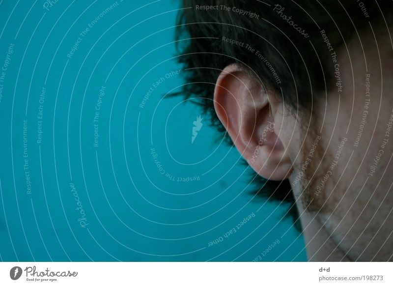 Colour Hair and hairstyles Young man Masculine Skin 18 - 30 years Ear Contact Listening Turquoise Brunette Depth of field Cheek Tone Sound Noise