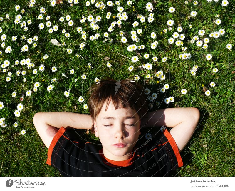 Human being Child Nature Youth (Young adults) Flower Vacation & Travel Calm Relaxation Boy (child) Meadow Spring Garden Head Contentment Masculine