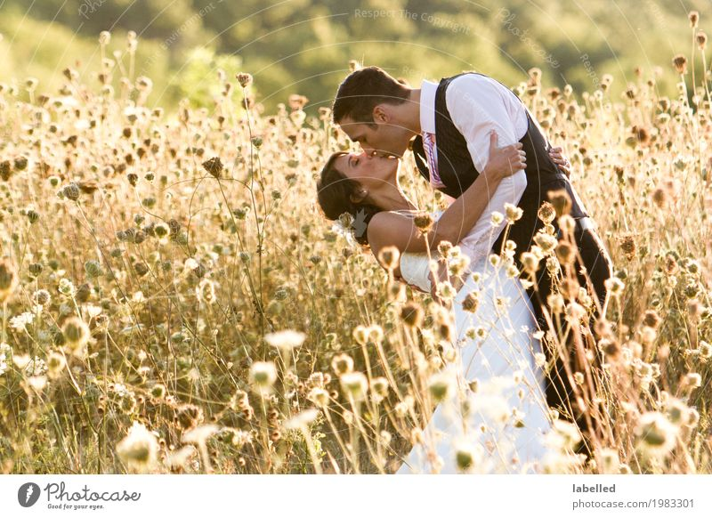 Kissing Couple Human being Woman Nature Youth (Young adults) Man Young man Joy 18 - 30 years Adults Lifestyle Love Feasts & Celebrations Together Field Gold