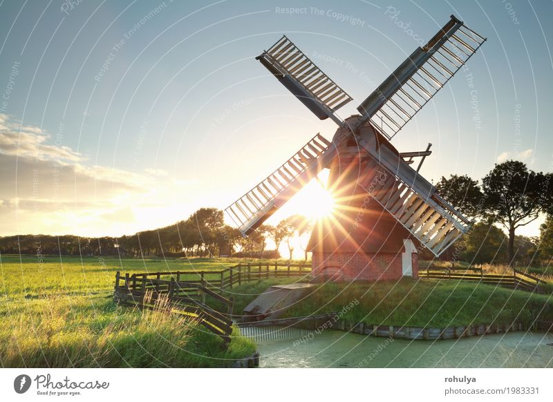 sunshine behind Dutch windmill Sun Nature Landscape Sky Summer Beautiful weather Grass Meadow River Building Architecture Green Windmill star sunrays field