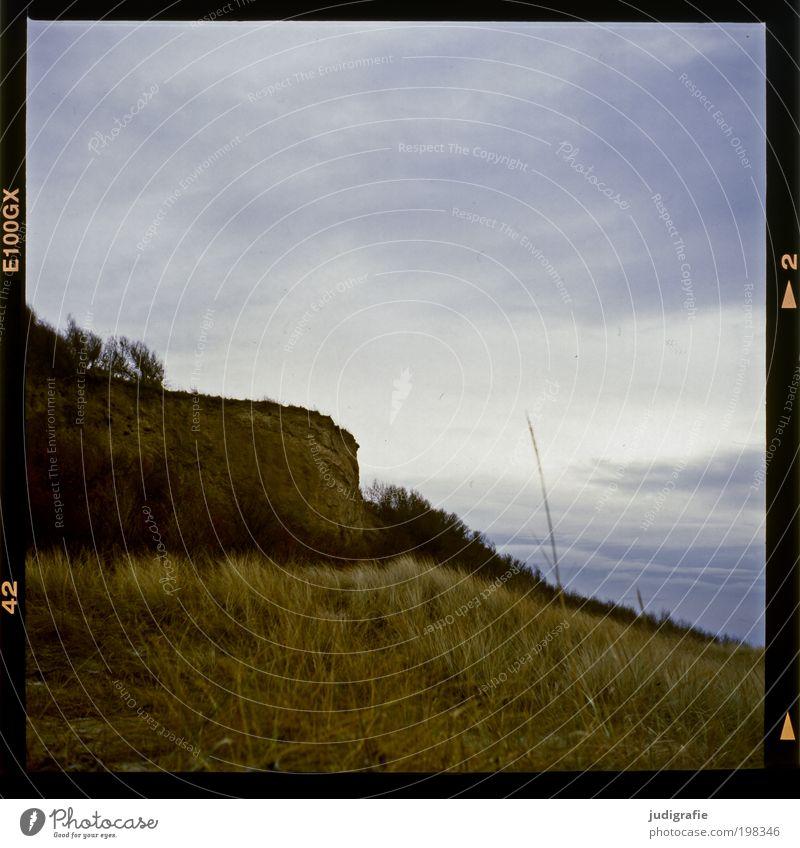 Nature Sky Ocean Plant Dark Grass Landscape Moody Coast Environment Climate Natural Baltic Sea Shame Darss Slide