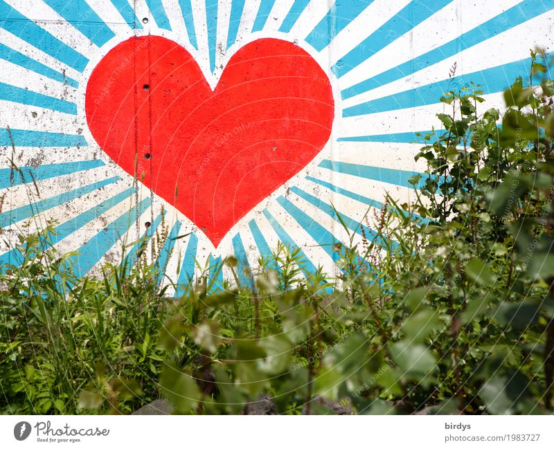 Blue Beautiful Green White Red Wall (building) Graffiti Love Emotions Grass Wall (barrier) Art Illuminate Glittering Esthetic Bushes