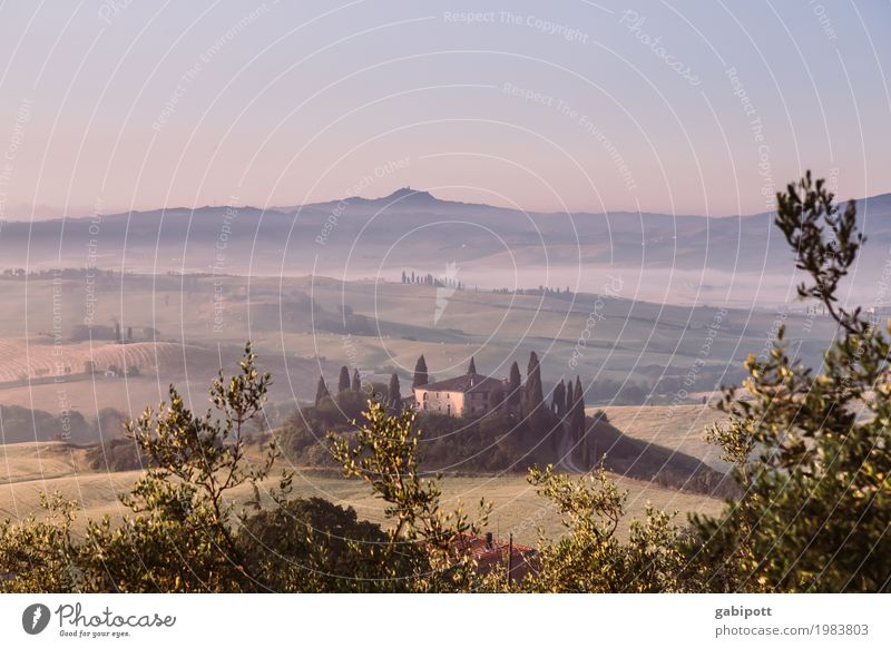 Val d'Orcia, Tuscany, Italy Well-being Senses Relaxation Calm Meditation Fragrance Vacation & Travel Tourism Trip Adventure Far-off places Freedom Sightseeing