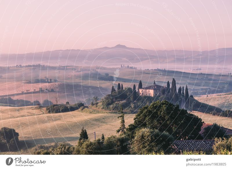 Val d'Orcia, Tuscany, Italy Harmonious Senses Relaxation Calm Vacation & Travel Tourism Trip Adventure Far-off places Freedom Summer Summer vacation Environment