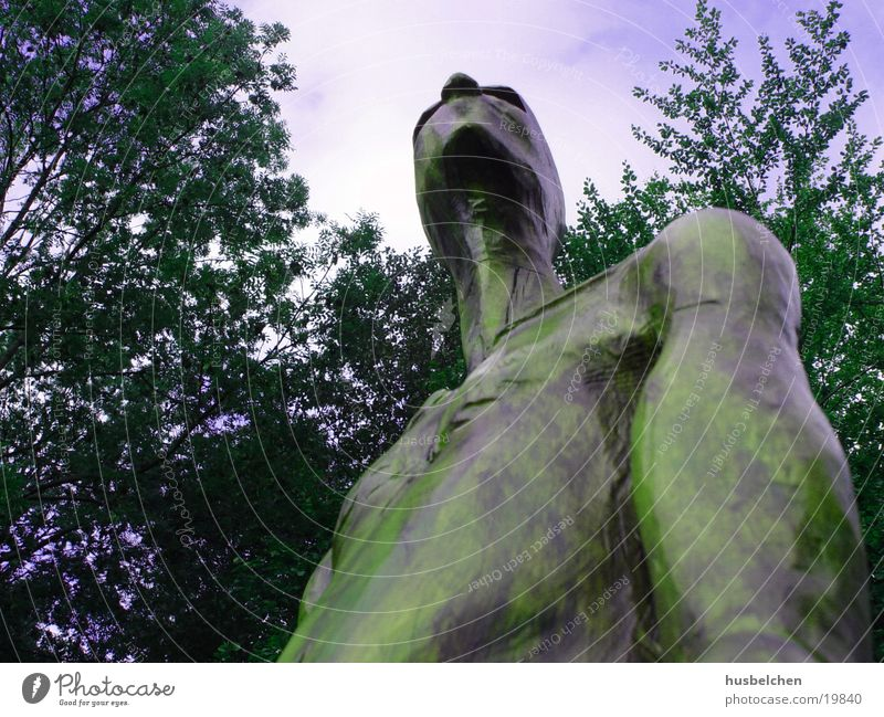 proud Sculpture Wood Forest Clearing Yellow Obscure Sky