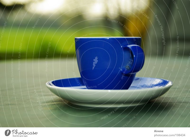 the blue cup To have a coffee Espresso Cup Relaxation Calm To enjoy Blue Coffee cup Coffee break Crockery Terrace Simple Green Contentment Esthetic enjoyment
