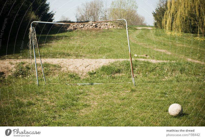 THE ROUND ONE MUST BE IN THE ANGULAR ONE Leisure and hobbies Playing Soccer Environment Nature Landscape Sky Horizon Beautiful weather Plant Tree Flower Grass