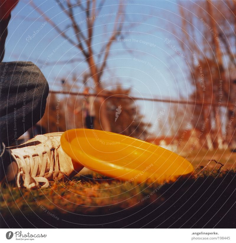 heating disc Summer Sun Shadow Yellow Frisbee Sneakers Tree Meadow Sky Relaxation Slacklining Shallow depth of field Crouch Worm's-eye view Exterior shot