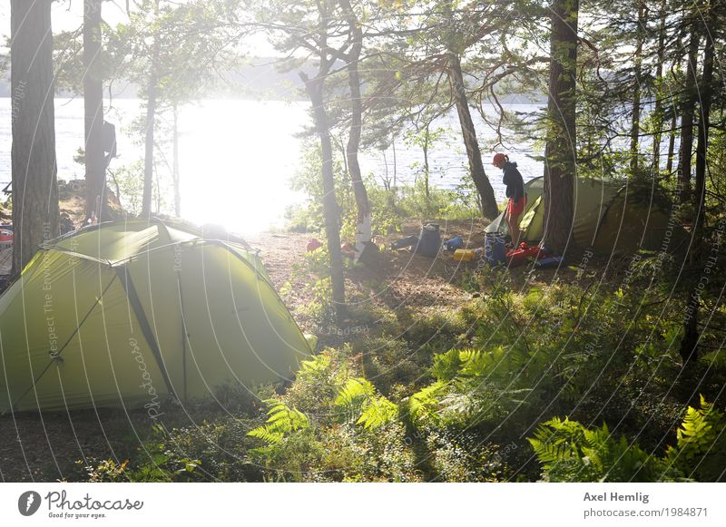 island bliss Woman Adults Life 1 Human being Water Sunlight Summer Beautiful weather Forest Island Lake Dalsland Canal Canoe Canoe trip Canoeist Tent Tent camp
