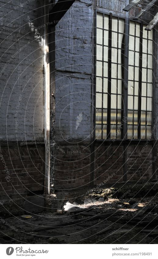 Window Wall (barrier) Hope Factory Derelict Brick Ruin Visual spectacle Hideous Industrial plant Phenomenon Shaft of light Joist Masonry Lattice window