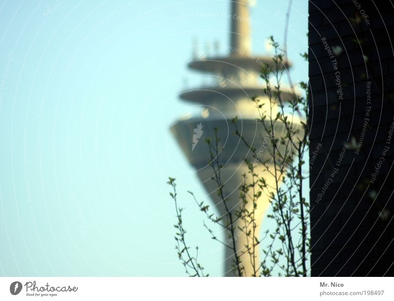 Sky Plant Wall (building) Architecture Wall (barrier) Building Germany Future Bushes Manmade structures Vantage point Skyline Landmark Capital city Elevator
