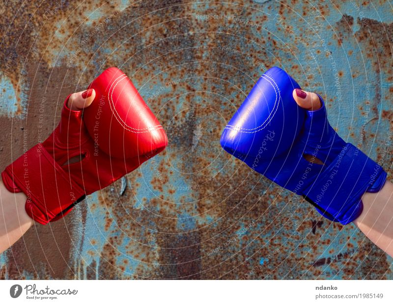 Two female hands in red and blue boxing gloves Human being Woman Youth (Young adults) Old Blue Hand Red 18 - 30 years Adults Sports Feminine Metal Retro Power
