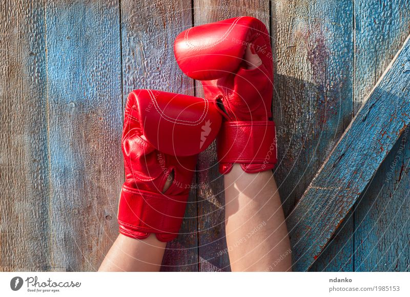 pair of female hands in red boxing gloves Human being Woman Youth (Young adults) Old Blue Hand Red 18 - 30 years Adults Sports Feminine Wood Retro Power Success