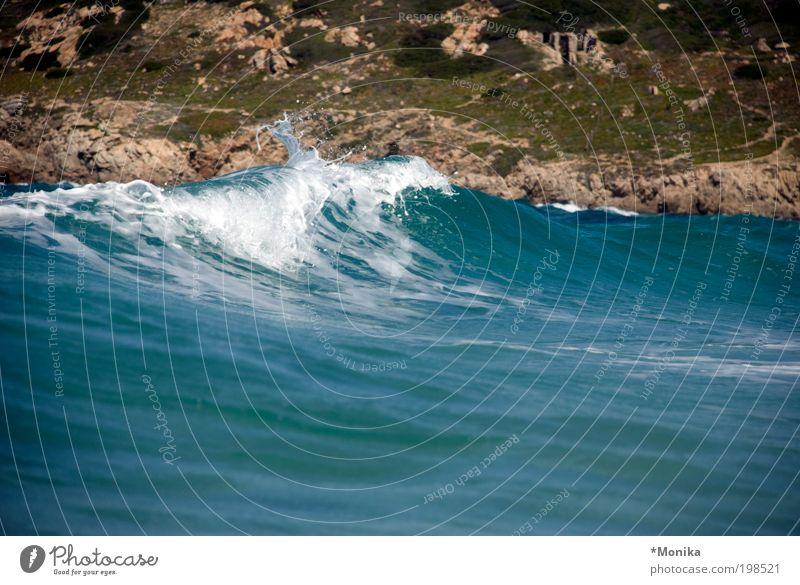Nature Blue Summer Vacation & Travel Ocean Calm Waves Power Wet Large Tourism Elements Pure Fluid Joie de vivre (Vitality) Water