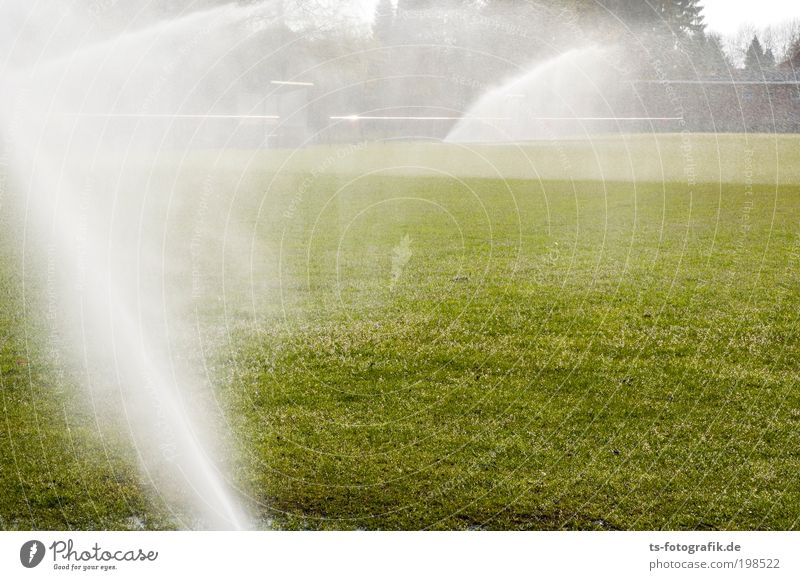 Water Green White Summer Playing Grass Movement Spring Warmth Rain Wet Fog Drops of water Esthetic Growth Climate