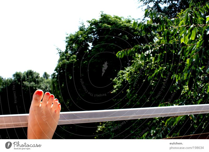 Summer Colour Feet Contentment Beautiful weather Senses Human being Nature