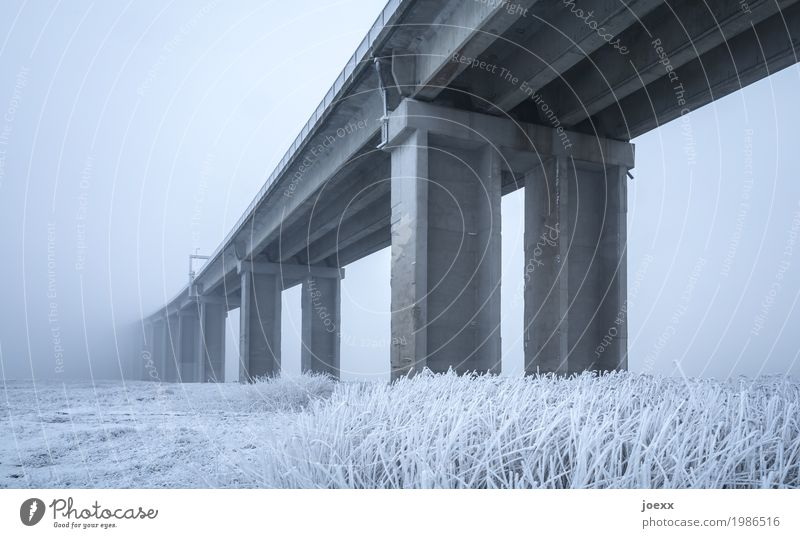 cold bridge Winter Weather Bad weather Fog Ice Frost Bridge Concrete Tall Gray White Colour photo Subdued colour Exterior shot Deserted Day Deep depth of field