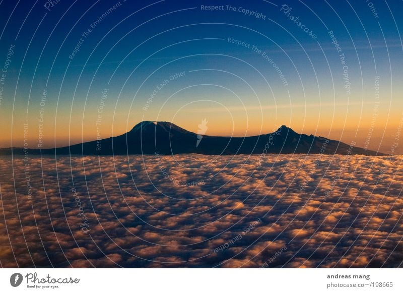 An island above the clouds Vacation & Travel Air Sky Sky only Clouds Horizon Sunrise Sunset Sunlight Mountain Snowcapped peak Infinity Cold Blue Gold Hope