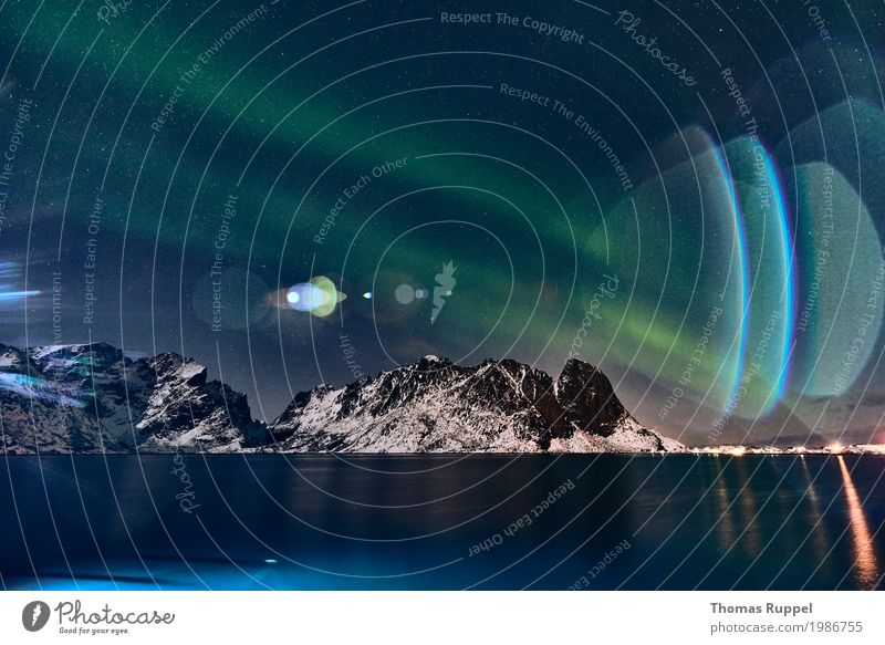 aurora Adventure Ocean Winter Winter vacation Mountain Landscape Water Sky Night sky Stars Aurora Borealis Peak Snowcapped peak Coast Bay Fjord Lofotes Norway