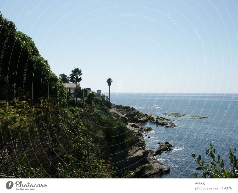 A cottage by the sea House (Residential Structure) Ocean Sun Palm tree Cliff