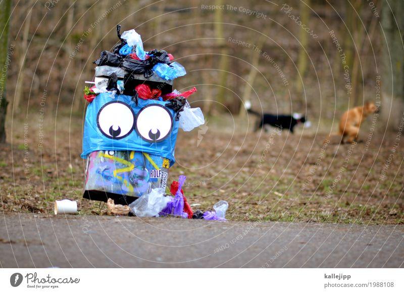 Nature Dog Blue Town Landscape Animal Eyes Environment Lifestyle Meadow Funny Park Statue Trash Feces Pet