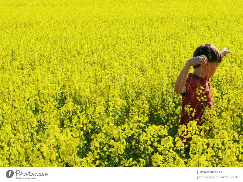 Human being Child Nature Sun Summer Joy Yellow Life Environment Boy (child) Movement Happy Spring Infancy Field Masculine