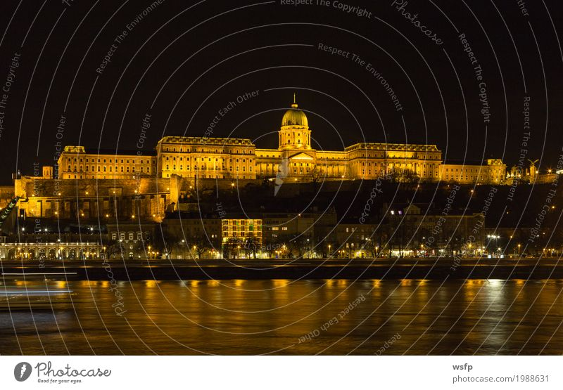 Hungary Castle Palace Budapest at night Tourism Town Architecture Historic Castle palace castle hill castle quarter Lighting Lock City Danube travel Attraction