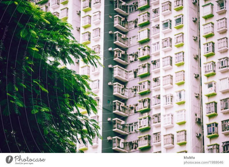 Big flat-box in Hong Kong, China Vacation & Travel Green Landscape House (Residential Structure) Architecture Street Life Building Tourism Facade