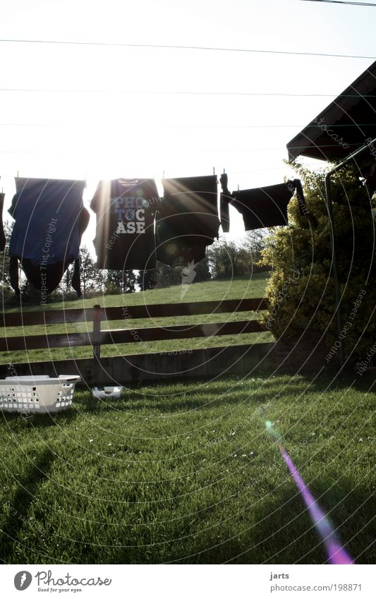 All fresh Style Sun Garden Meadow Clothing T-shirt Fresh Clean Laundry Clothesline Laundry basket dry laundry photocase yats Colour photo Exterior shot Deserted