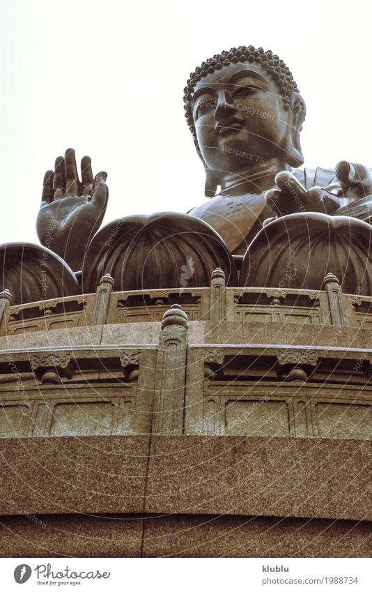 Tian Tan Buddha Temple, Hong Kong Meditation Art Culture Architecture Old Large Religion and faith pray Statue figurine big Temple of Heaven Buddhism Asia