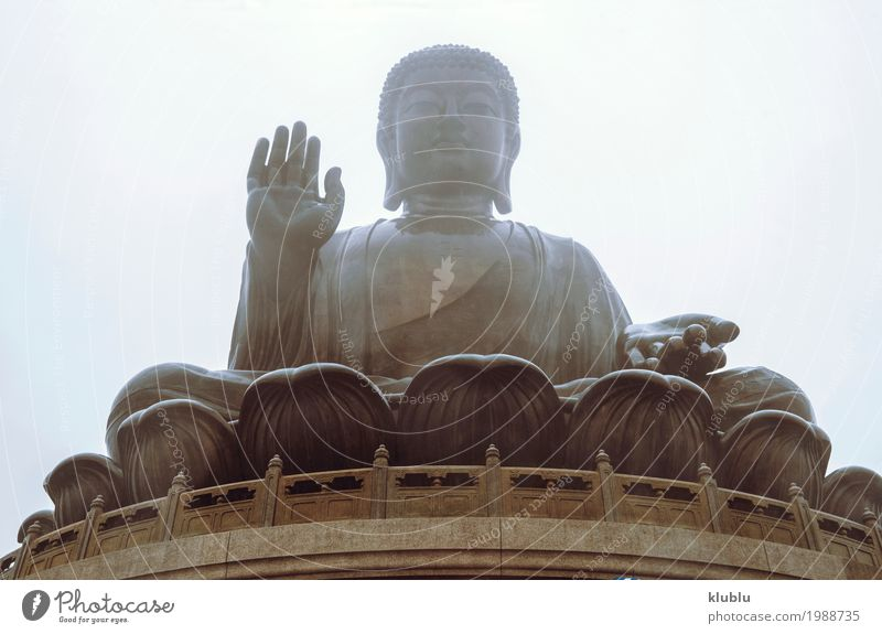 Big Buddha statue Meditation Art Culture Architecture Old Large Religion and faith Statue big Temple of Heaven Buddhism Asia Ancient buddhist sculpture asian