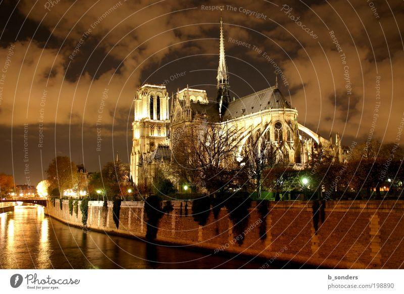 Notre Dame Paris Capital city Cathedral Tourist Attraction Culture Art Religion and faith Sky France Colour photo Exterior shot Night