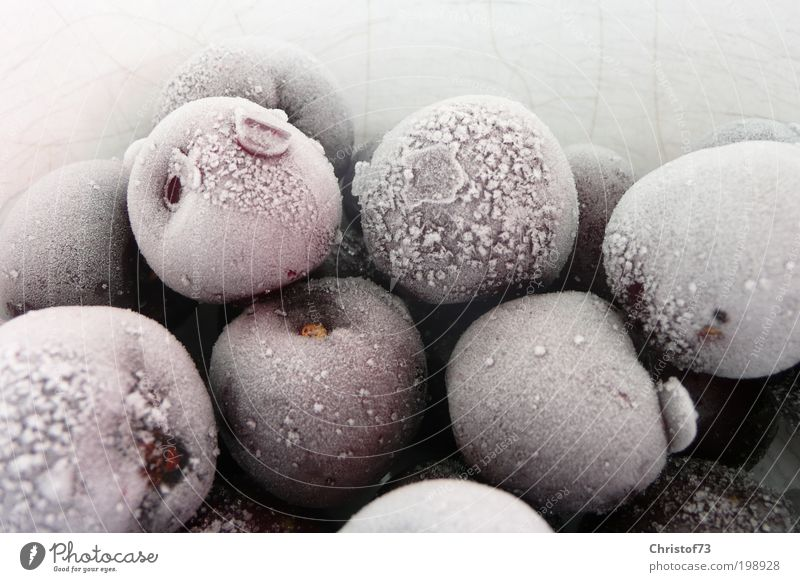 White Calm Cold Ice Food Drops of water Fruit Cool (slang) Frost Frozen Nature Freeze Still Life Organic produce Cherry