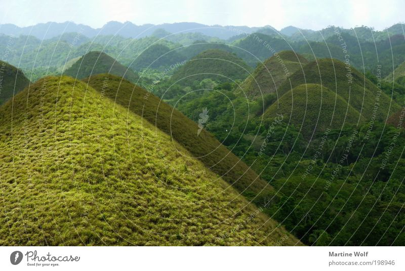 green chocolate Vacation & Travel Tourism Trip Far-off places Sightseeing Mountain Nature Landscape Grass Hill Waves Chocolate Hills Philippines Asia Free