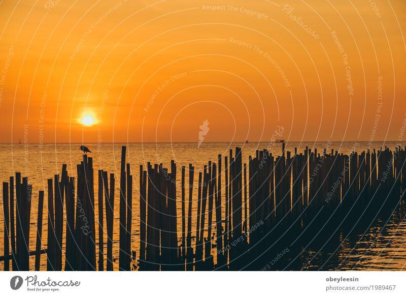 The silhouette of Canoe at sunset Nature Landscape Ocean Joy Beach Lifestyle Style Art Waves Fear Adventure Bay Artist