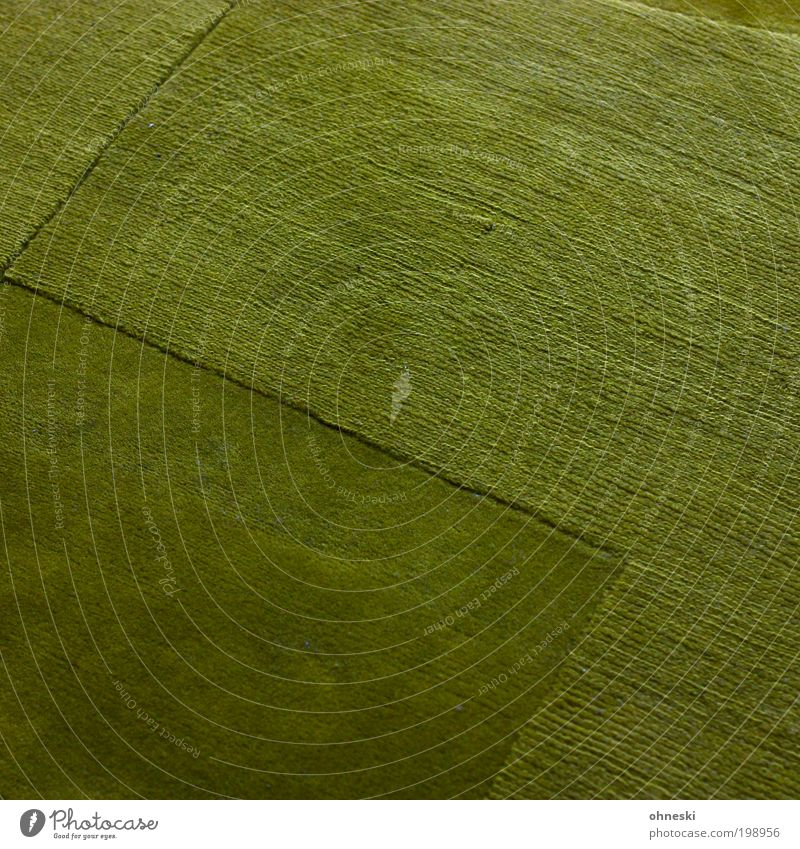 The meadow is green Living or residing Flat (apartment) Arrange Interior design Room Living room Carpet Green Hope Meadow Colour photo Interior shot Abstract