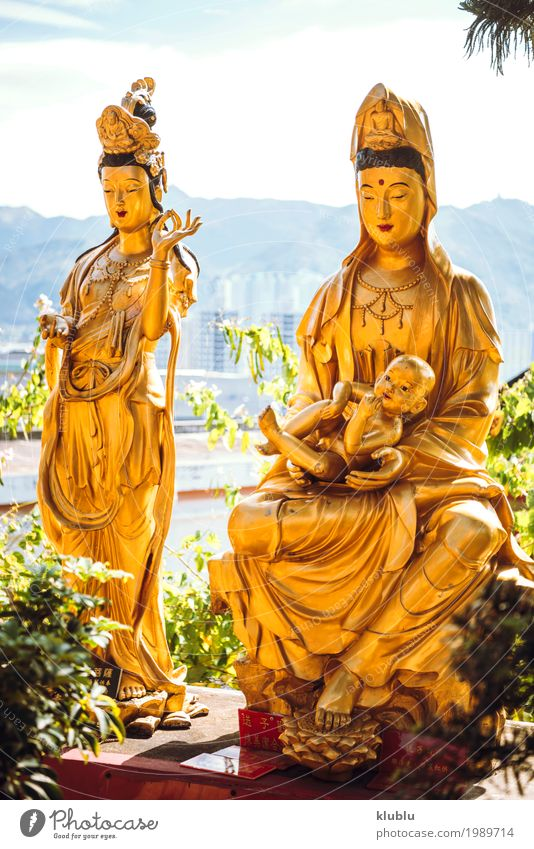 Temple in Hong Kong Beautiful Face Vacation & Travel Tourism Decoration Art Culture Architecture Monument Street Lanes & trails Exceptional Bright Yellow Gold