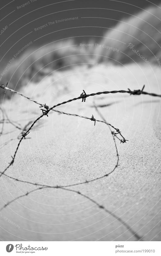 barbed wire Nature Sand Cloudless sky Aggression Threat Thorny Gloomy Gray Black Fear Animosity Apocalyptic sentiment Sadness Barbed wire Fence Captured Barrier