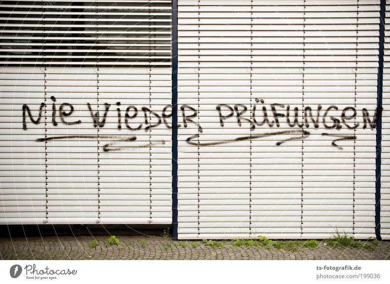 Vacation & Travel Window Wall (building) Graffiti School Wall (barrier) Fear Study Academic studies Communicate Education Plastic University & College student