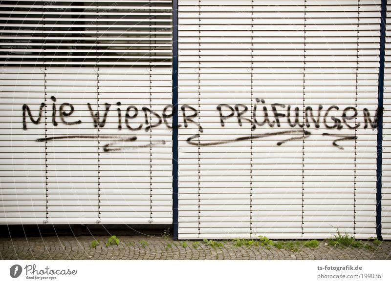 Vacation & Travel Window Wall (building) Graffiti School Wall (barrier) Fear Study Academic studies Communicate Education Plastic University & College student Sign Adult Education Joie de vivre (Vitality)