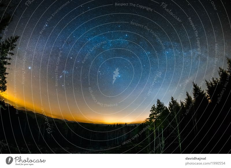 Astro landscape in the Palatinate Forest Far-off places Freedom Nature Landscape Sky Night sky Stars Horizon Tree Hill Peak think tank Germany